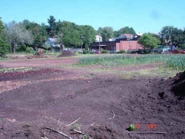 Soil - glorious, fertile soil!
